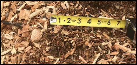 WOODCHIPS1